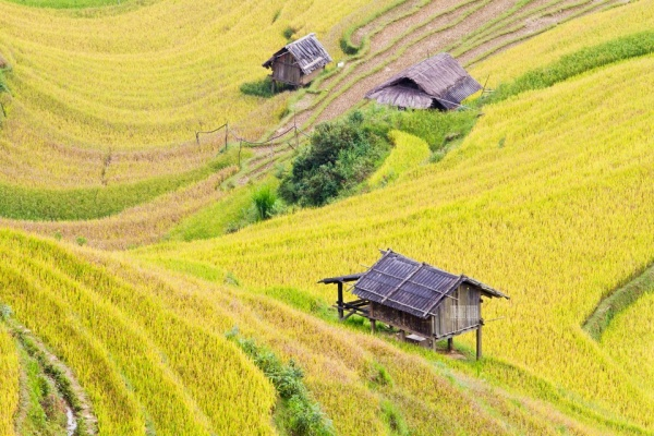 che cu nha village, north vietnam
